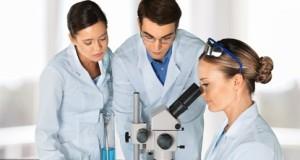 Laboratory, Scientist, Research.